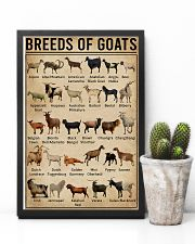 Breeds Of Goat 11x17 Poster lifestyle-poster-8