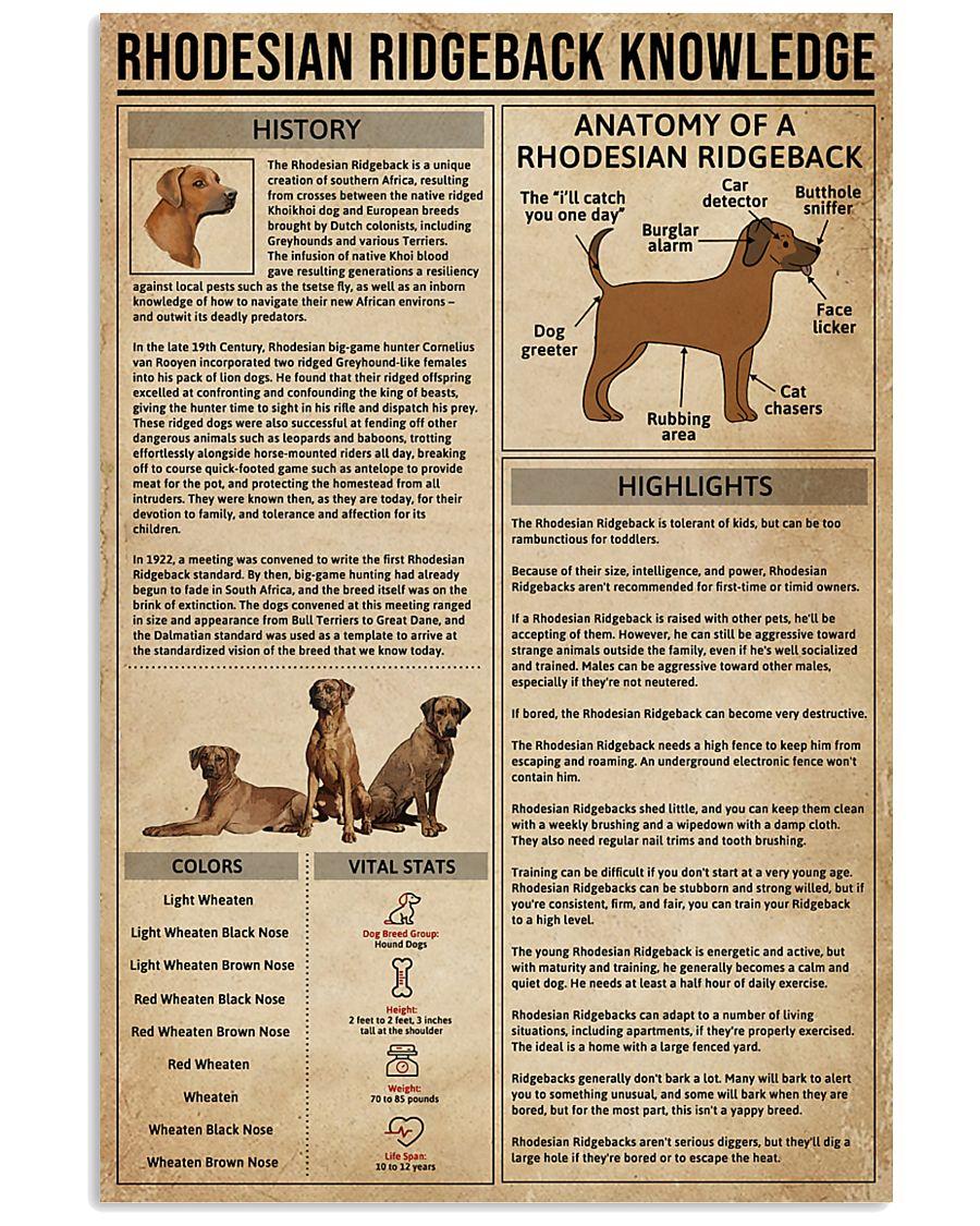 Rhodesian Ridgeback Knowledge Dog 11x17 Poster