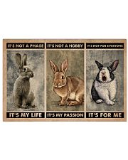 Rabbit It's Not A Phase 24x16 Poster front