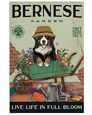 Bernese Mountain Dog Garden 11x17 Poster front