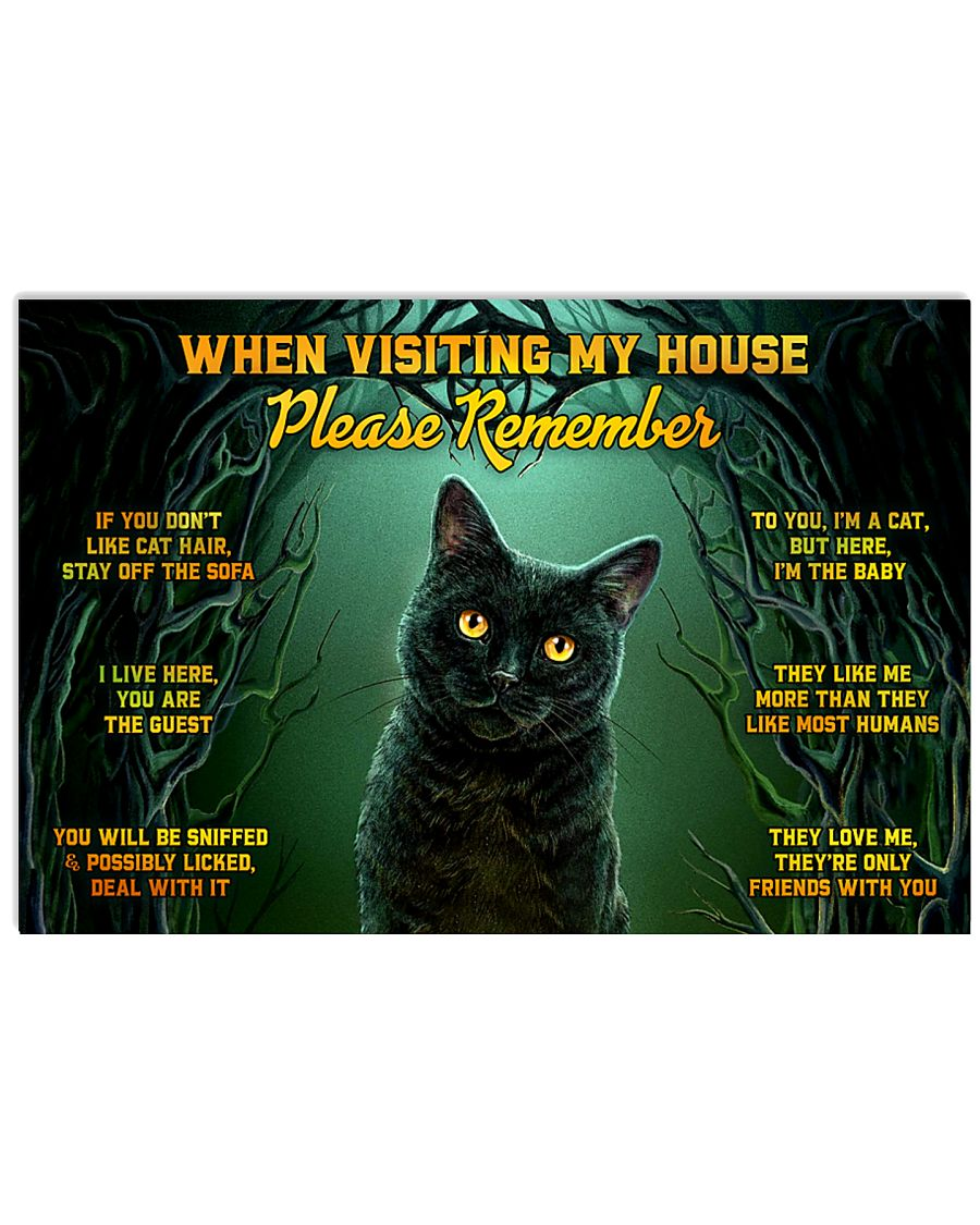 When Visiting My House Black Cat 24x16 Poster