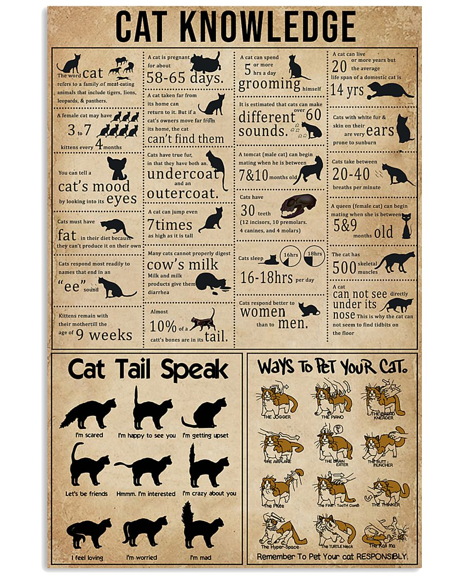 Knowledge Cats 11x17 Poster