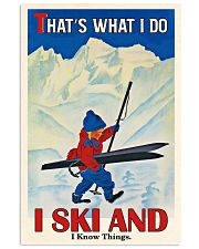 That's What I Do Skiing 16x24 Poster front