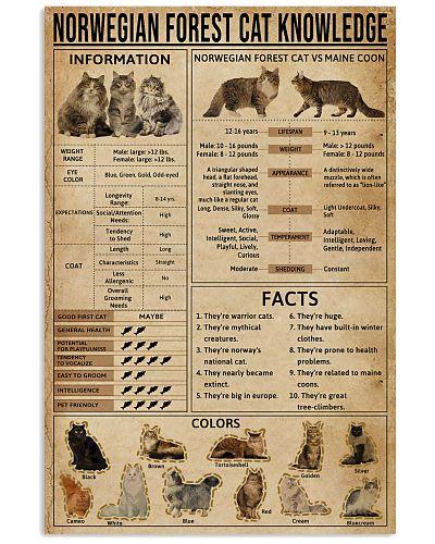 Norwegian Forest Cat Knowledge
