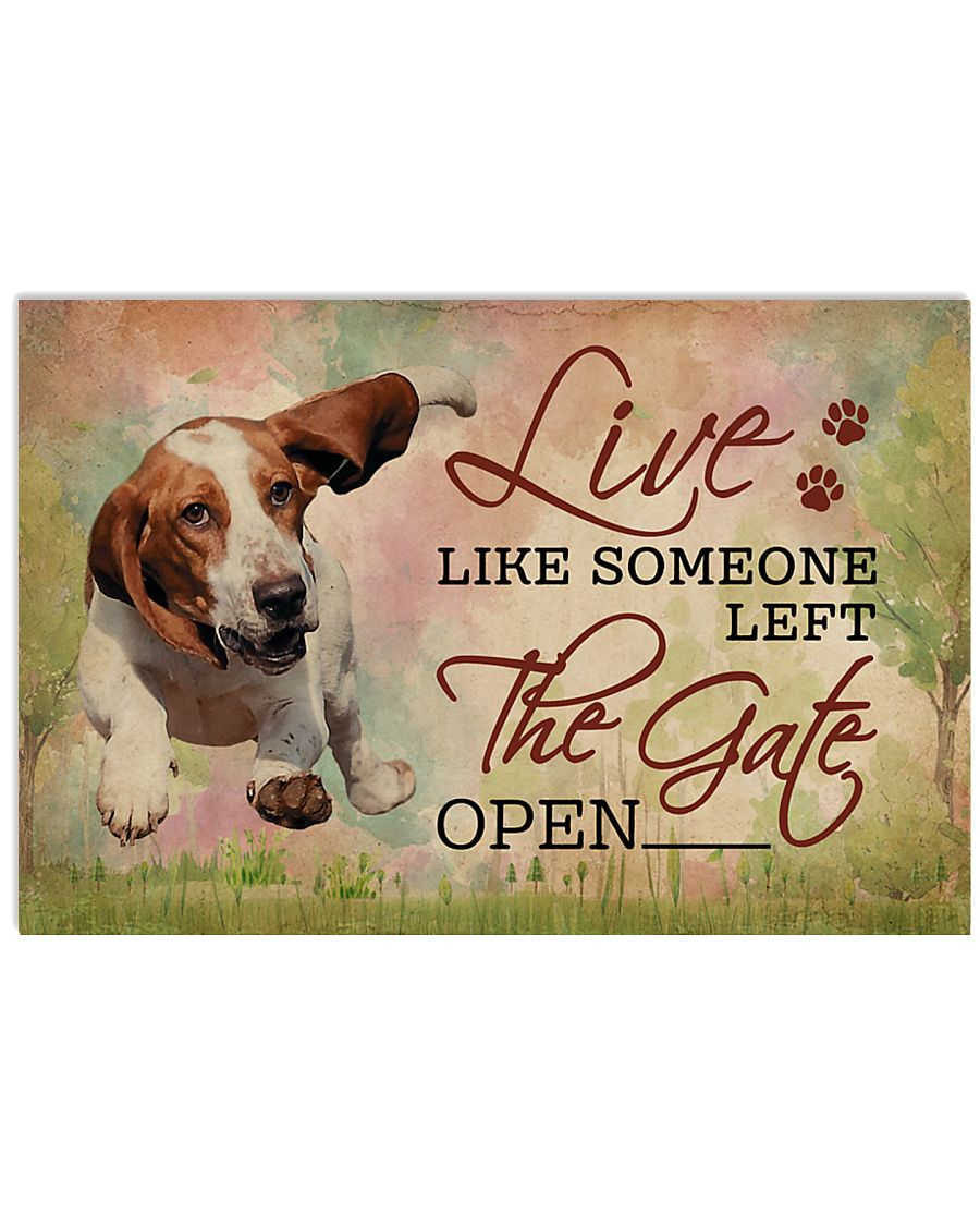 Live Like Someone Left The Gate Open Basset Hound 17x11 Poster
