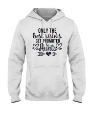 Only The Best Sisters Get Promoted To Aunts Hooded Sweatshirt tile