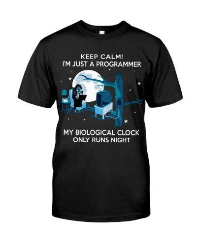 just a programmer