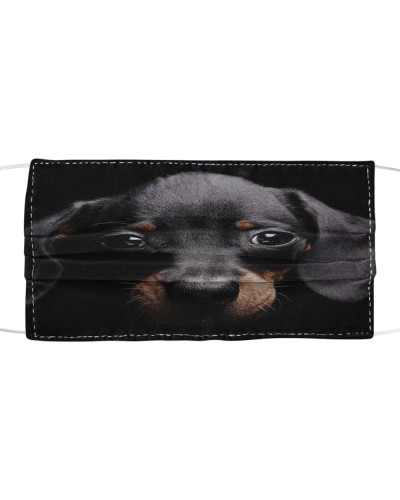 dachshund 2-yours Cloth Face Mask