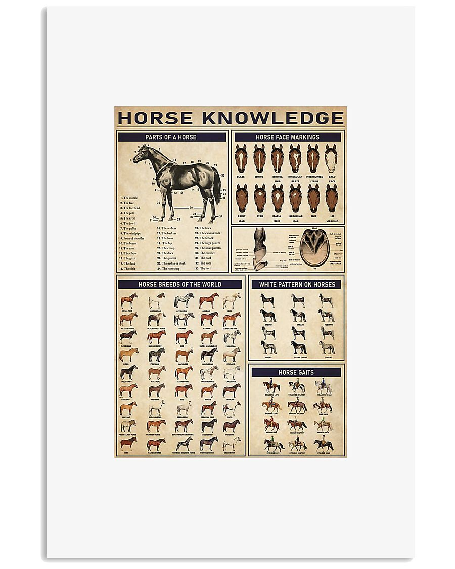 Horse knowledge poster 24x36 Poster