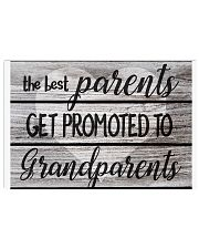 The Best Parents Get Promoted To Grandparents 36x24 Poster front