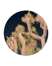 Joshua Tree National Park Circle Coaster thumbnail