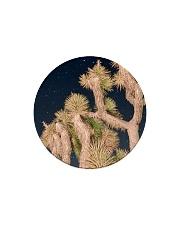 Joshua Tree National Park Circle Magnet thumbnail