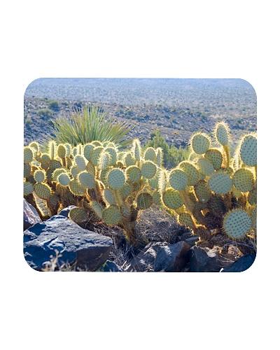 Joshua Tree Cactus Landscape