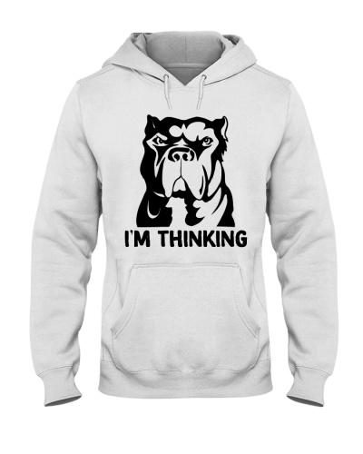 i'm thinking-pitpull
