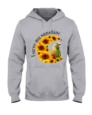Pineapple Conure You Are My Sunshine  Hooded Sweatshirt thumbnail