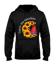 Eclectus You Are My Sunshine  Hooded Sweatshirt thumbnail