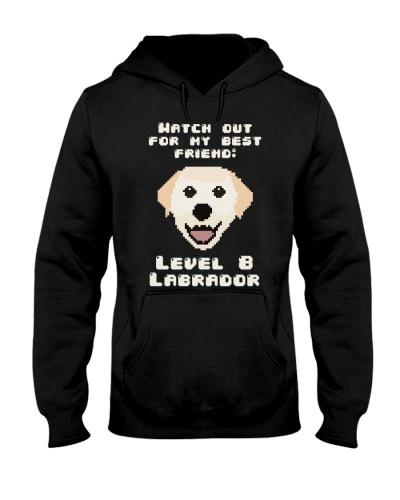 My best friend Labrador RPG style