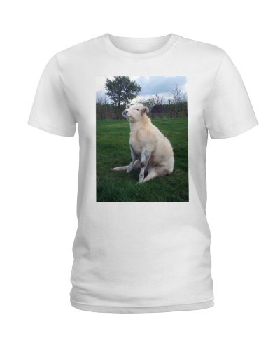 Limited Edition - Cow