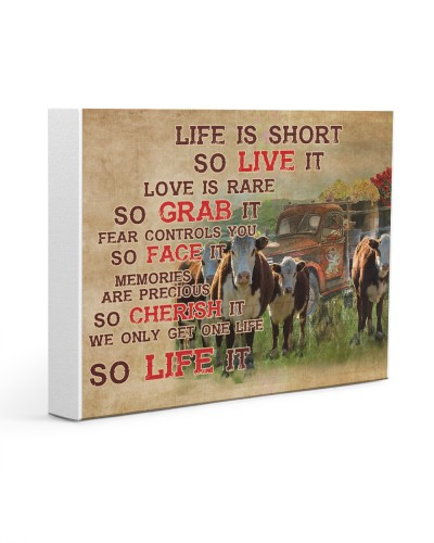 Cow Life Is Short