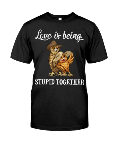 Owl Love Is Being Stupid Together