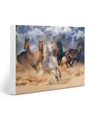 Horse Thunderstorm