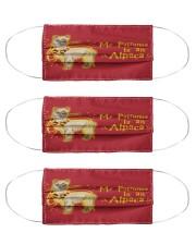 N- alpac-2407-li129 Cloth Face Mask - 3 Pack front
