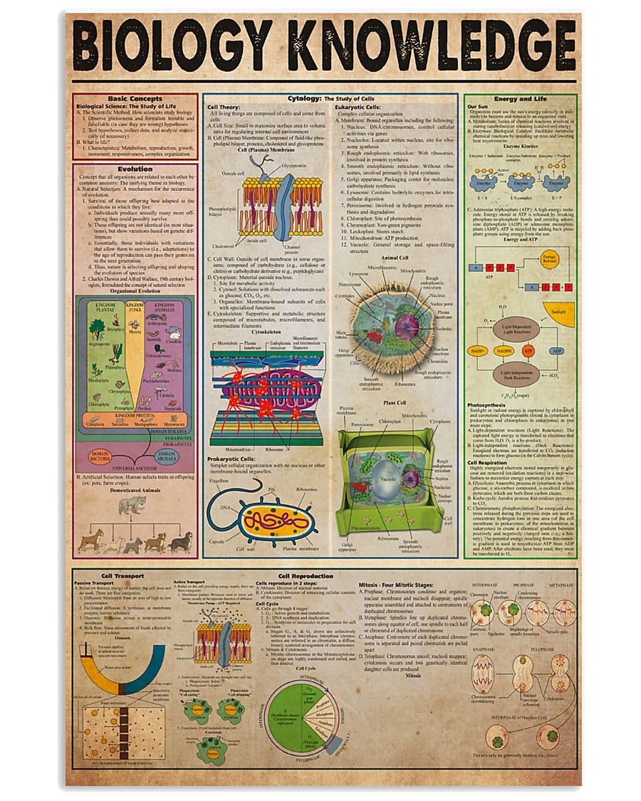 biology-knowledge21 11x17 Poster