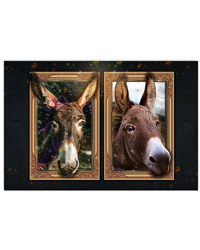 donkey 2-3d poster