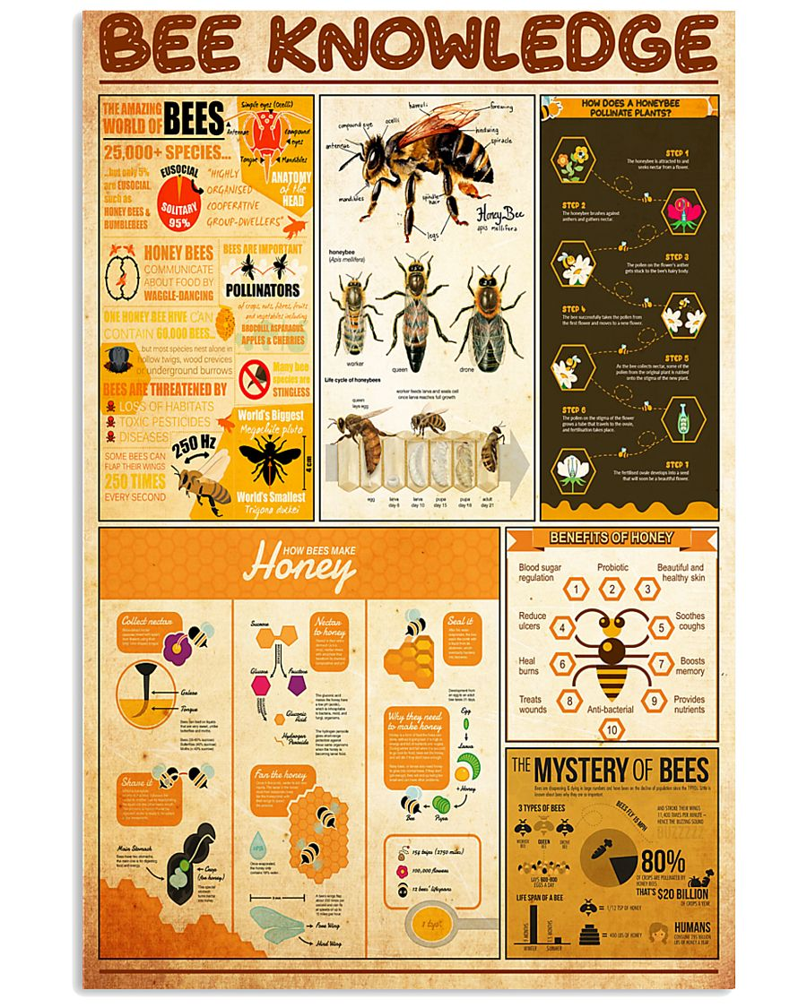 bee-knowledge 24x36 Poster