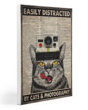 Cats photography easily distracted pt dvhh ngt 20x30 Gallery Wrapped Canvas Prints thumbnail
