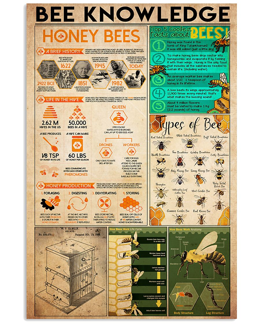 1bee knowledge  24x36 Poster