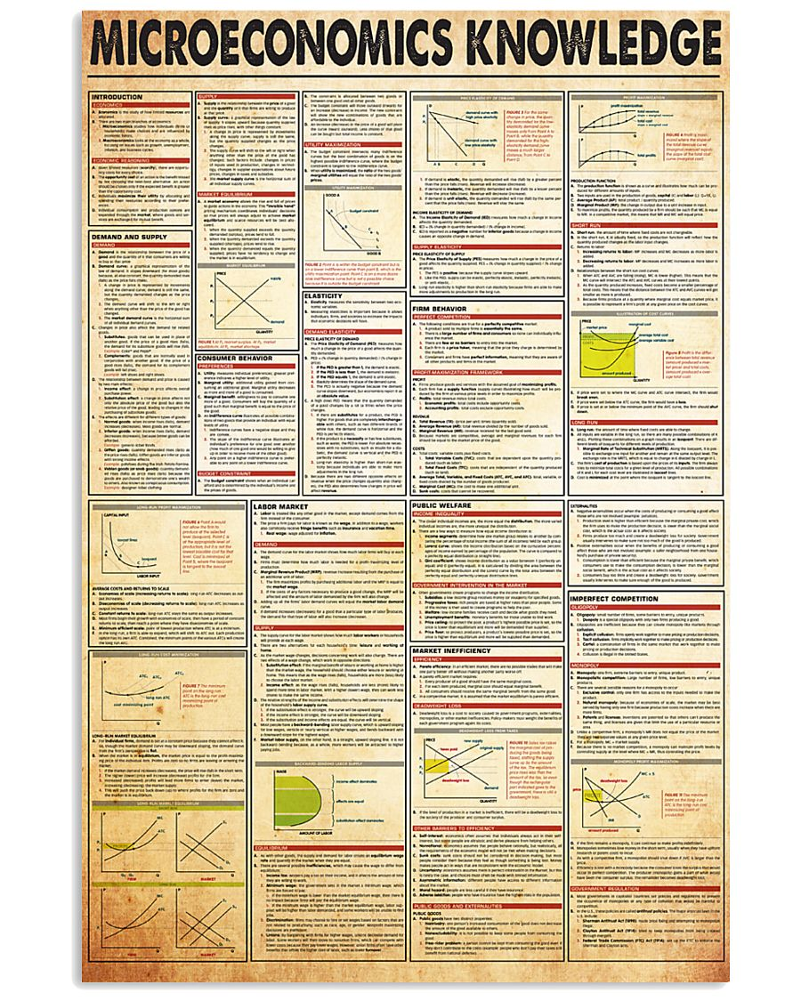 microeconomics-knowledge 24x36 Poster