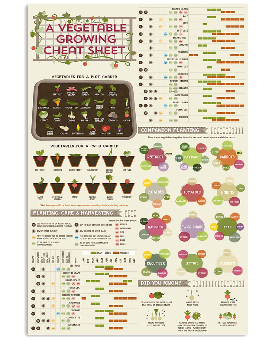 vegetables gardening knowledge 24x36 Poster