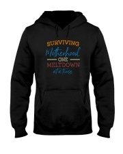 SURVIVING MOTHERHOOD ONE MELTDOWN AT A TIME Hooded Sweatshirt thumbnail