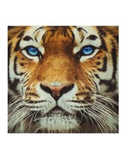 Tiger face mask Cloth face mask aos-face-mask-coverlet-lifestyle-front-02