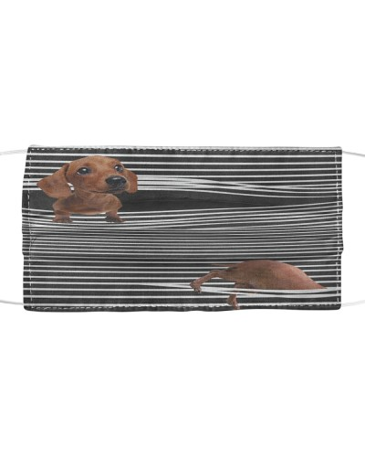 Dachshund Torn Out