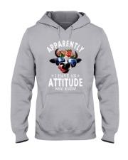 APPARENTLY Hooded Sweatshirt thumbnail