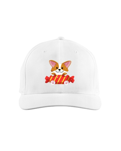 Funny Cute Corgi Hat 015