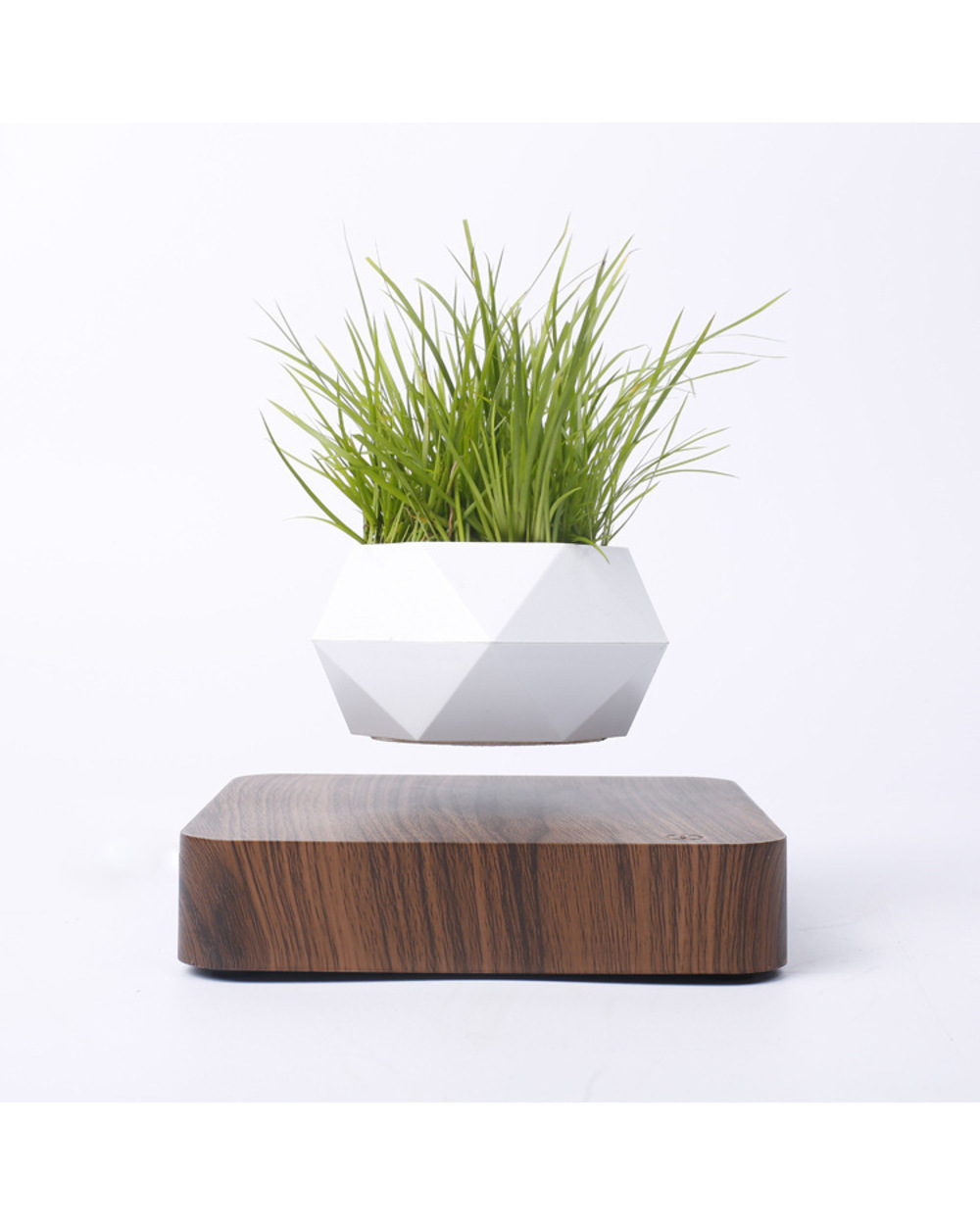 Levitating Plant Pot Air Bonsai 1