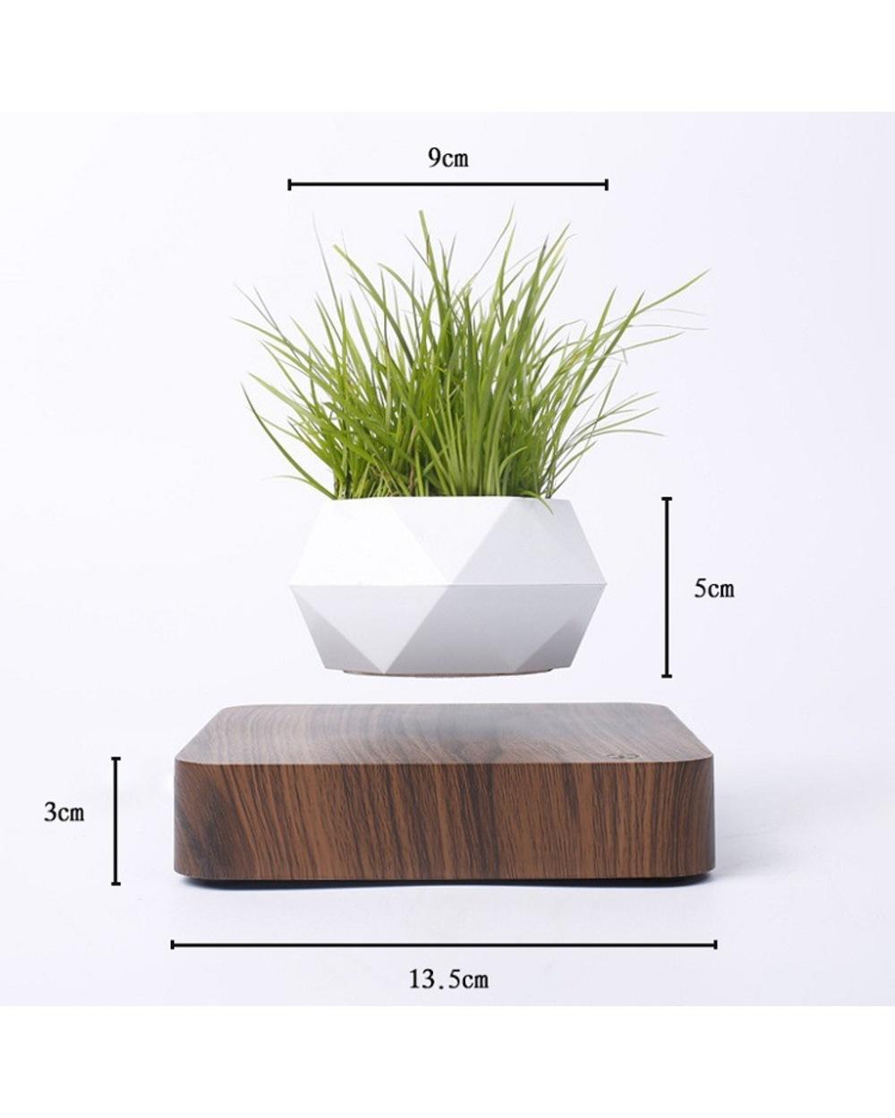 Levitating Plant Pot Air Bonsai 2