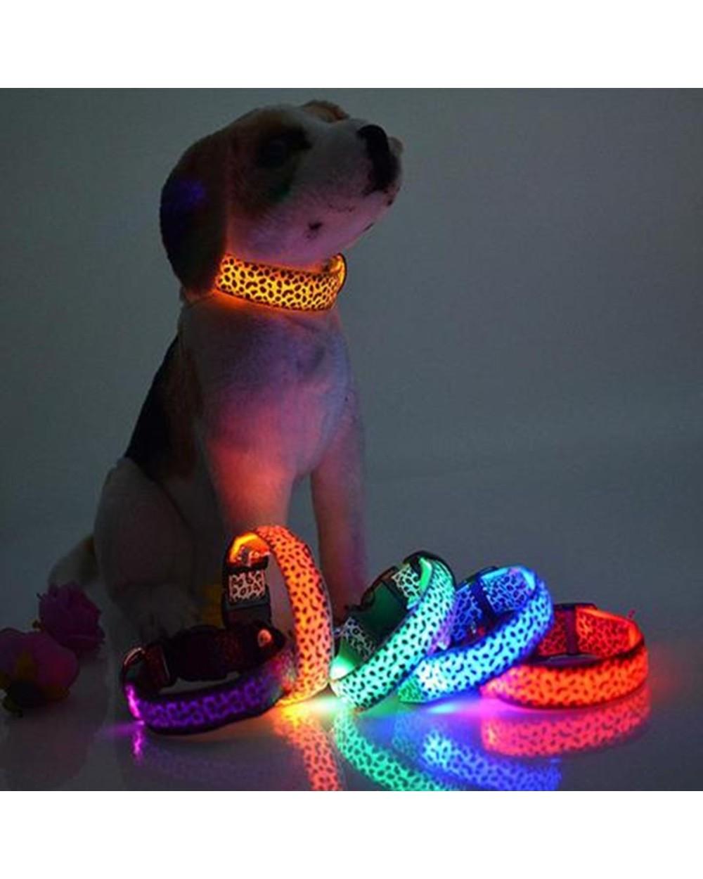 Led Dog Collar LED Dog Collar 1