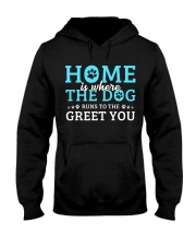 Home Is Where The Dog Runs To The Greet You Hooded Sweatshirt thumbnail