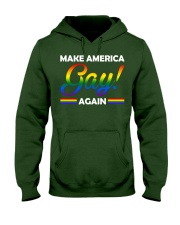 america gay Hooded Sweatshirt front