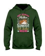 Exotic Shorthair Hooded Sweatshirt front