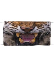 Tiger Cloth face mask front