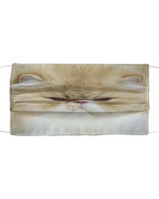 Love Persian Cloth face mask front