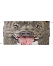 Love Pitbull Cloth face mask front