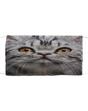 Funy Face Cat Cloth face mask front