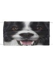 Love Collie Cloth face mask front
