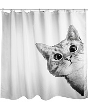 cats  crazy Shower Curtain front